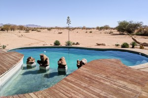Pool at Solitaire Desert Farm, Namibia by Wandering Wheatleys