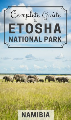 Complete Guide to Etosha National Park, Namibia by Wandering Wheatleys