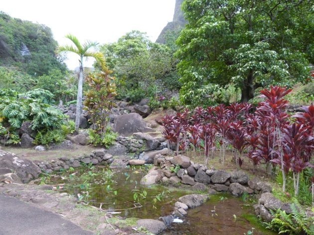 Iao Gardens