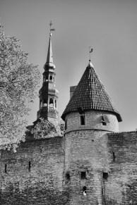 Tallinn-6