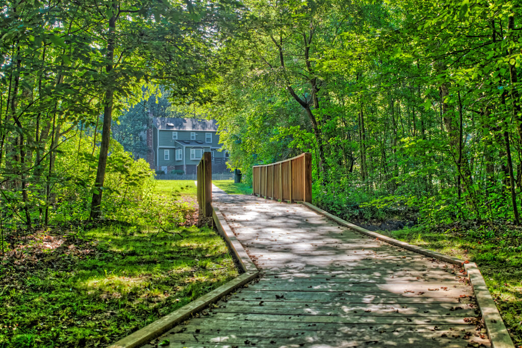 Wooden boardwalk and bridge out of the woods by Kelly Verdeck