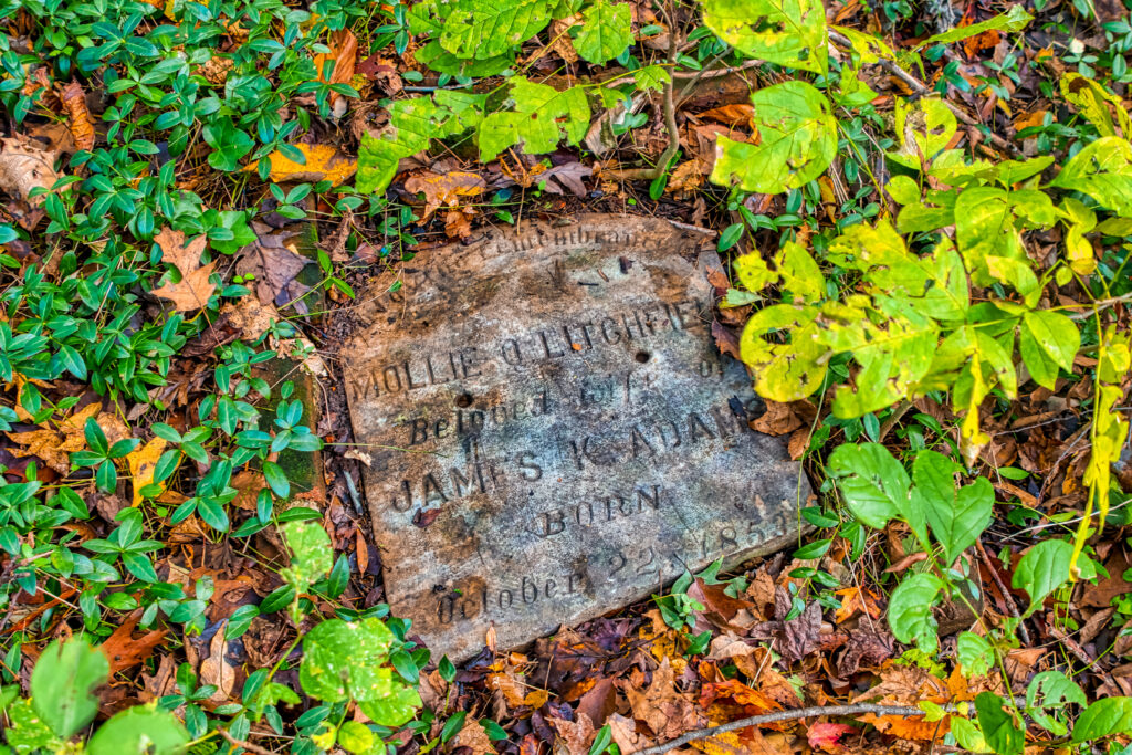 Stone memorial on the ground in forest, Brandermill VA.