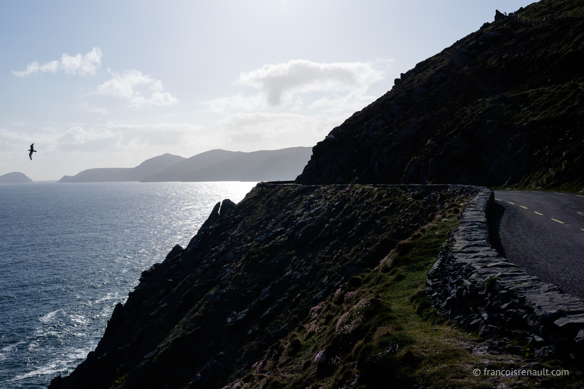 Dingle, Irlande