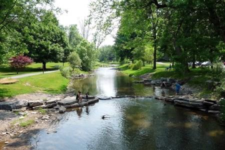 Marcellus Park