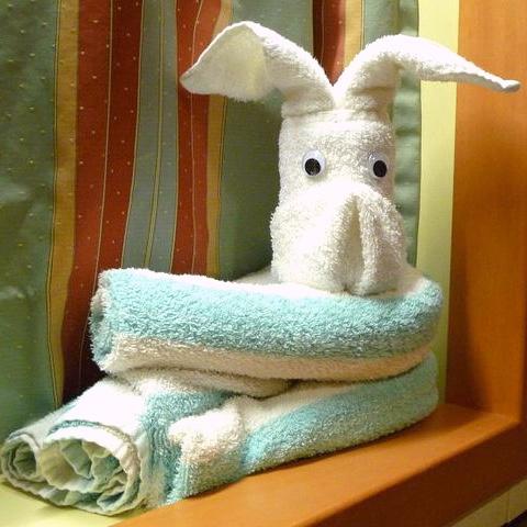 Cruise Towel Dog