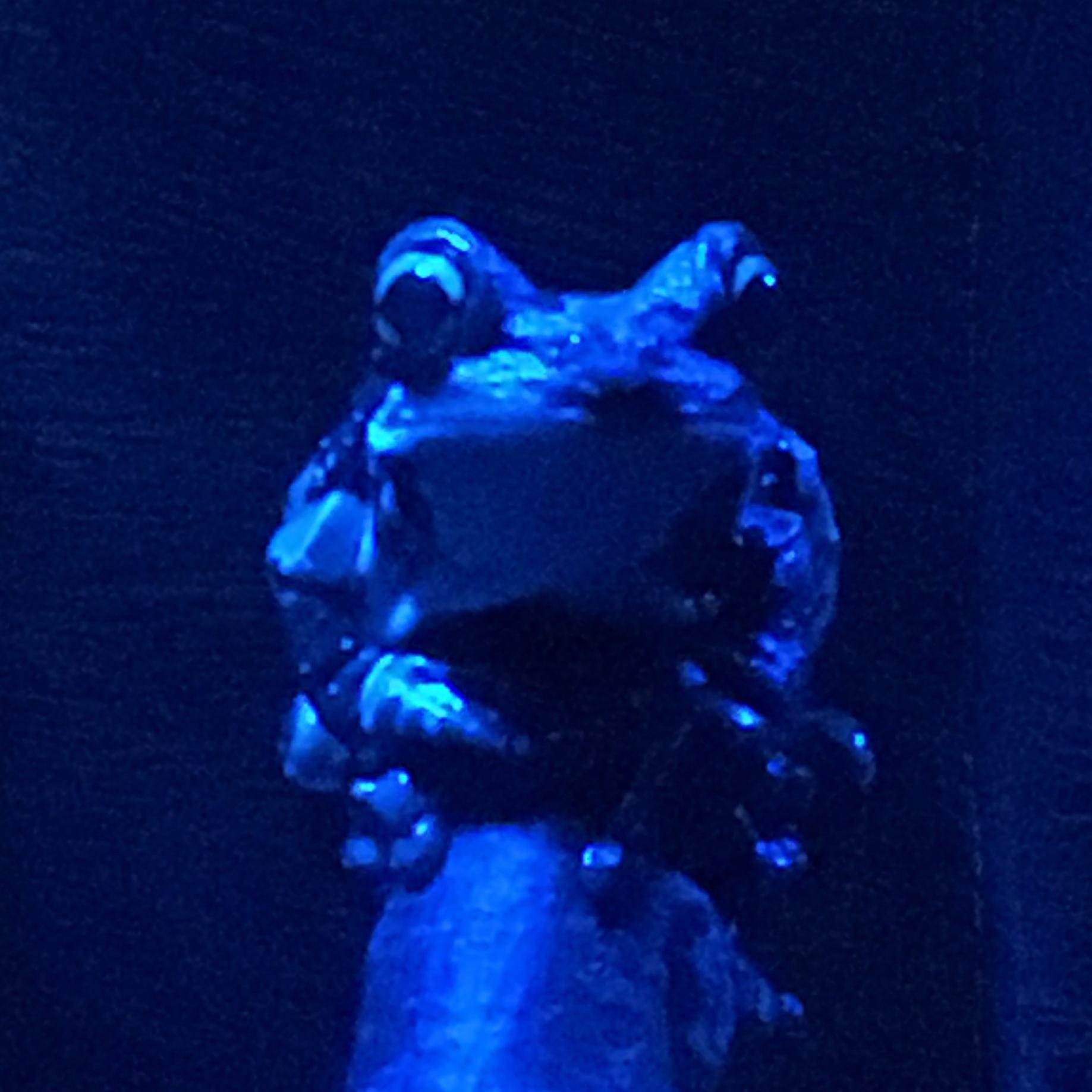Omaha Frog