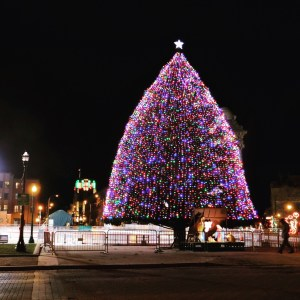Syracuse Christmas tree