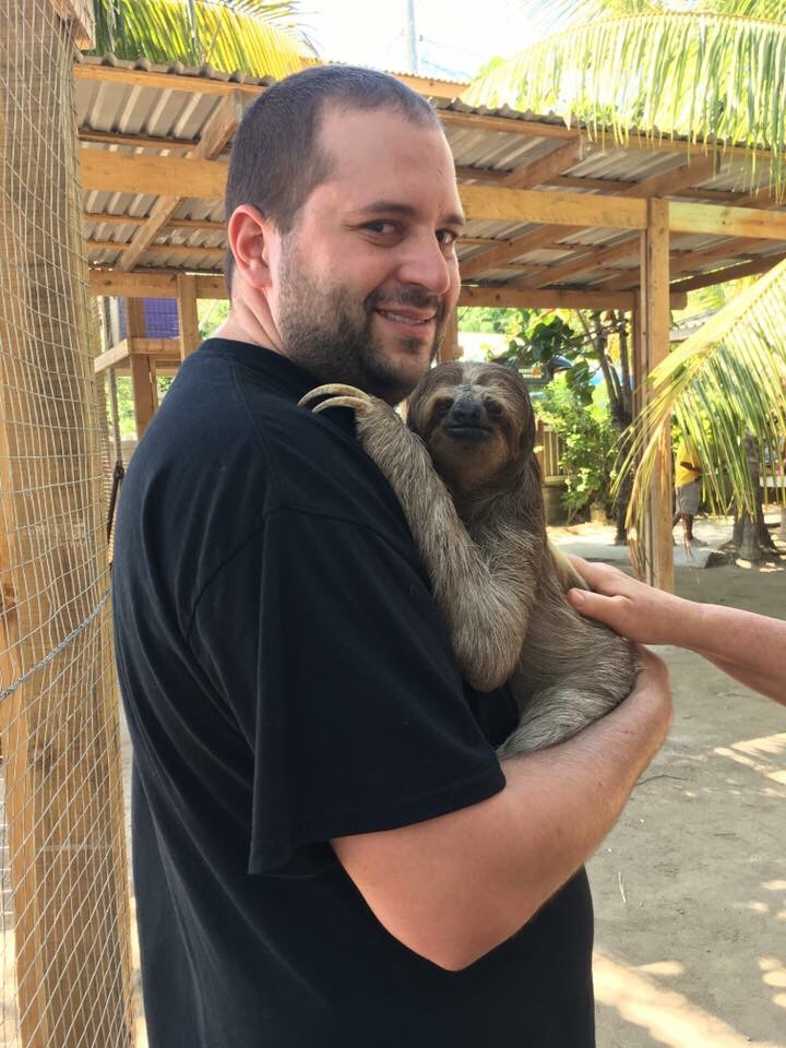 Roatan Bay Sloth