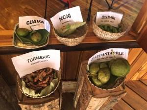 Belize Spice Farm Fruits