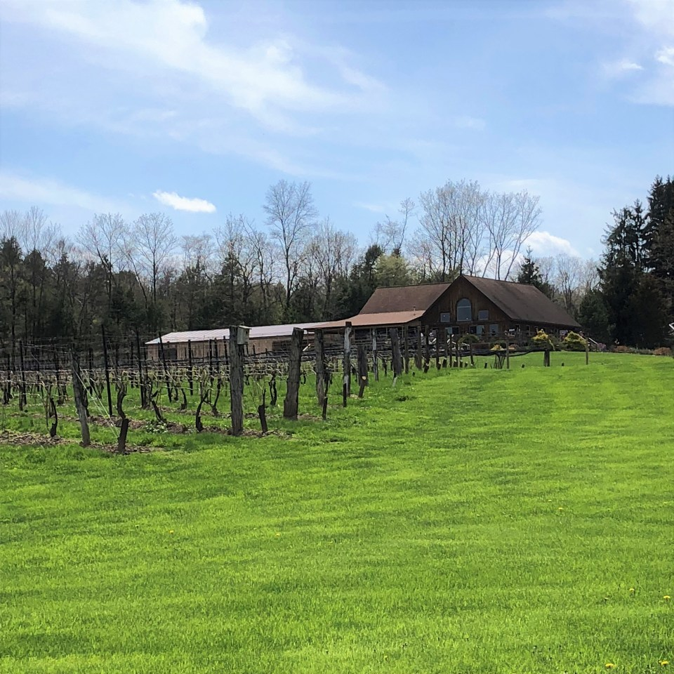 Cayuga Lake - Buttonwood Grove Winery