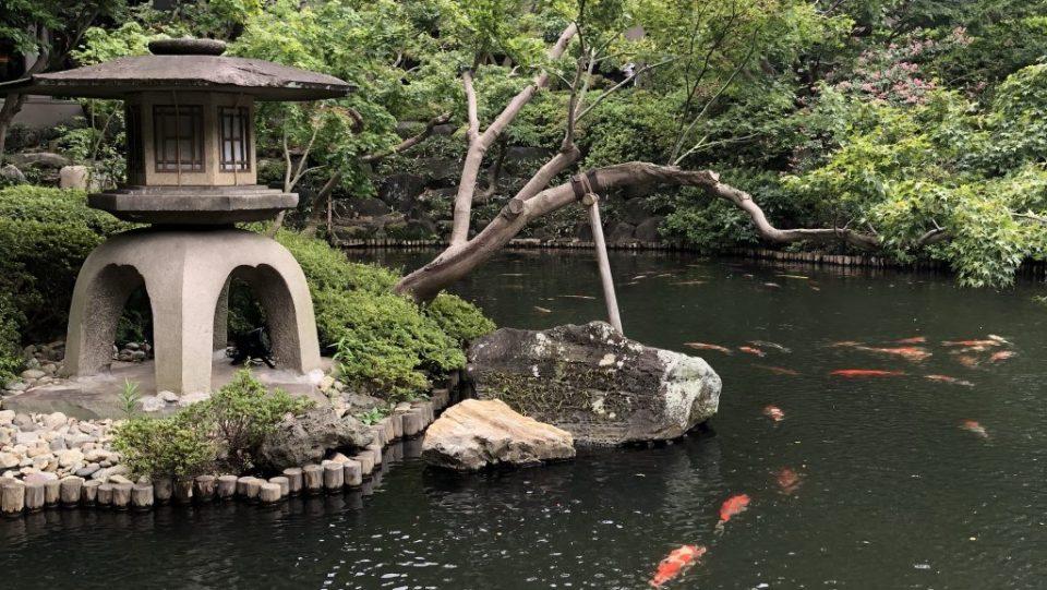 Japan - Tokyo Garden
