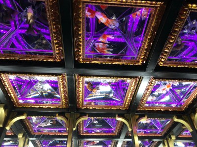 Japan - Tokyo Art Aquarium Ceiling