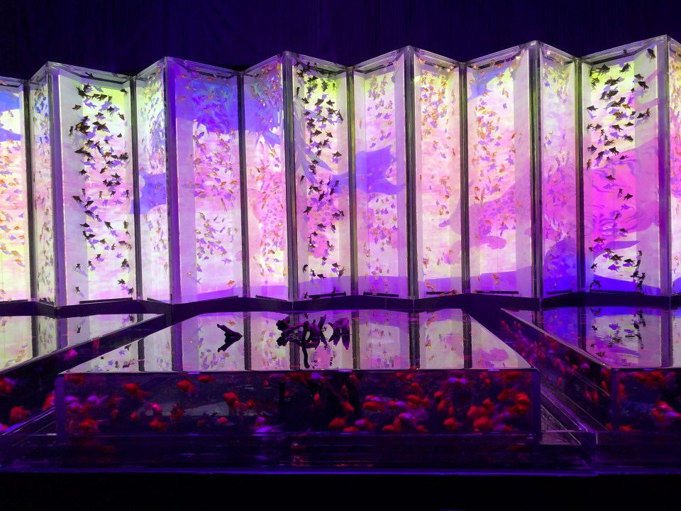 Japan - Tokyo Art Aquarium Folding Screens