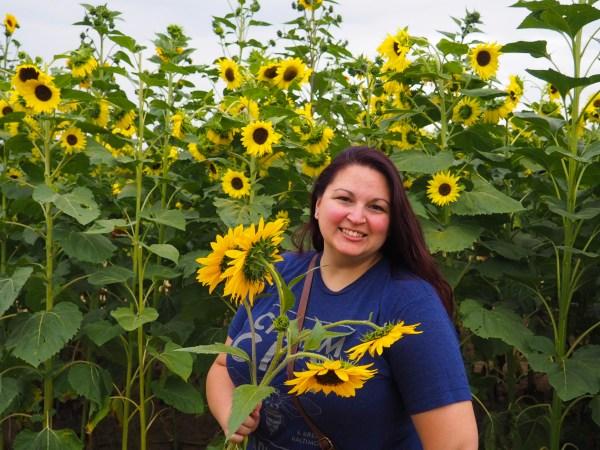 Dani at Wickham Sunflower Farm in Rochester New York