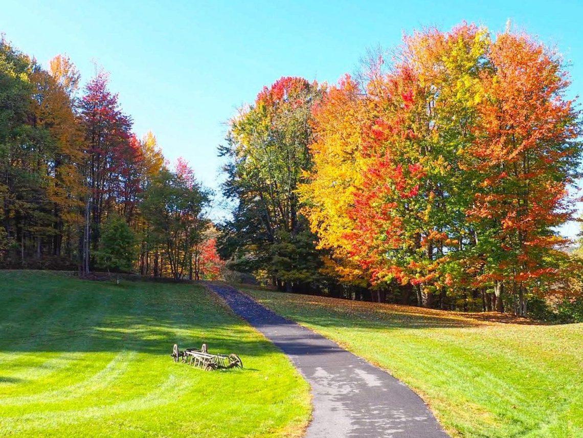 Oneida County Fall
