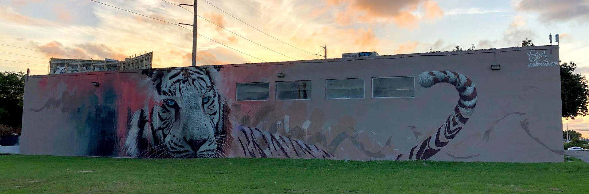 Tiger Mural Wynwood