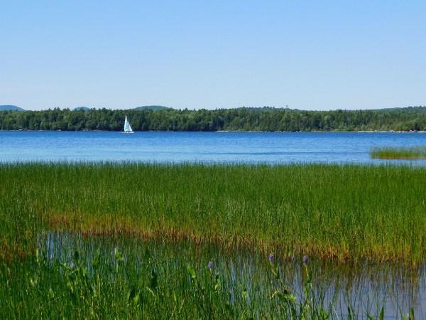 Sailboat on Raquette Lake