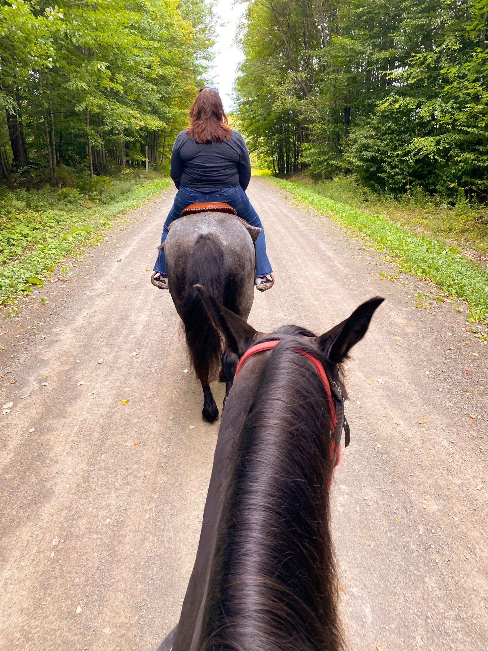 Horseback Riding in Chenango County