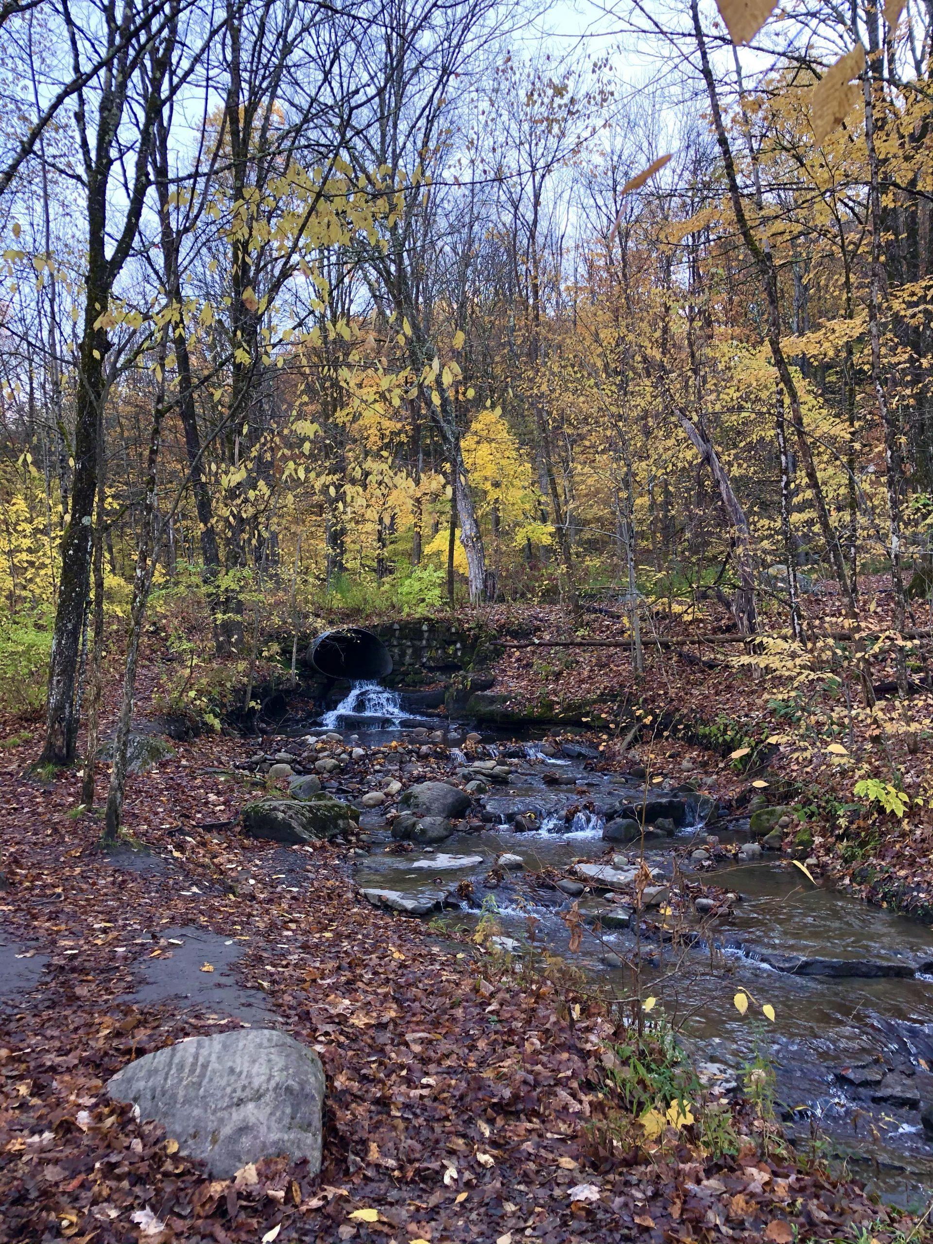 Pixley Falls Trail