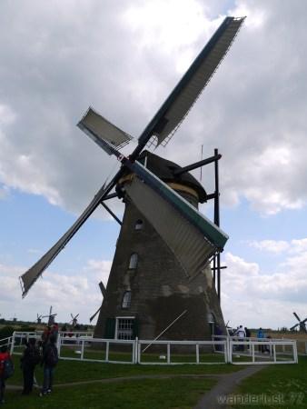 2014_0507オランダ20140272