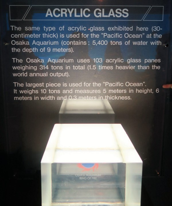 Acrylic wall that contain tonnes of water for deep sea fish