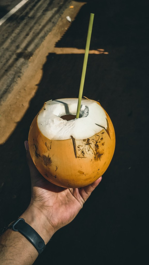King Coconut - Wanderlustgary.com
