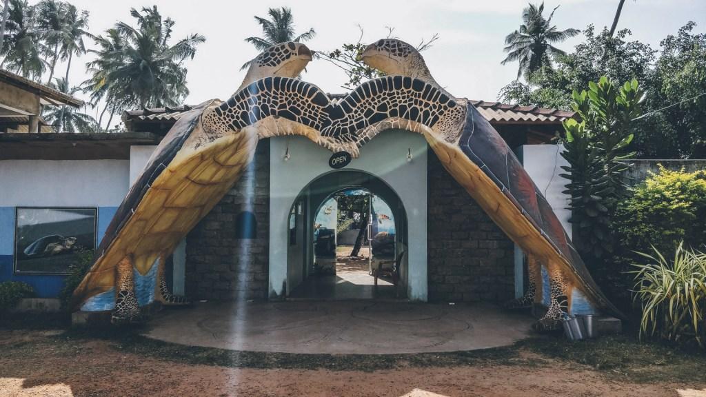 Turtle Conservation Centers, Sri Lanka - Wanerlustgary.com