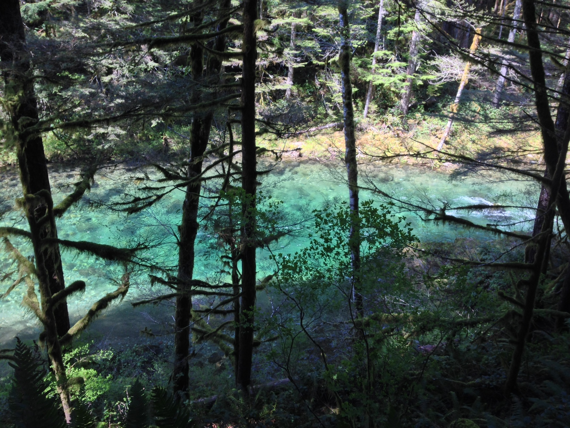 4 Reasons Why the Dangerous Beauty Award Goes to Siouxon Loop