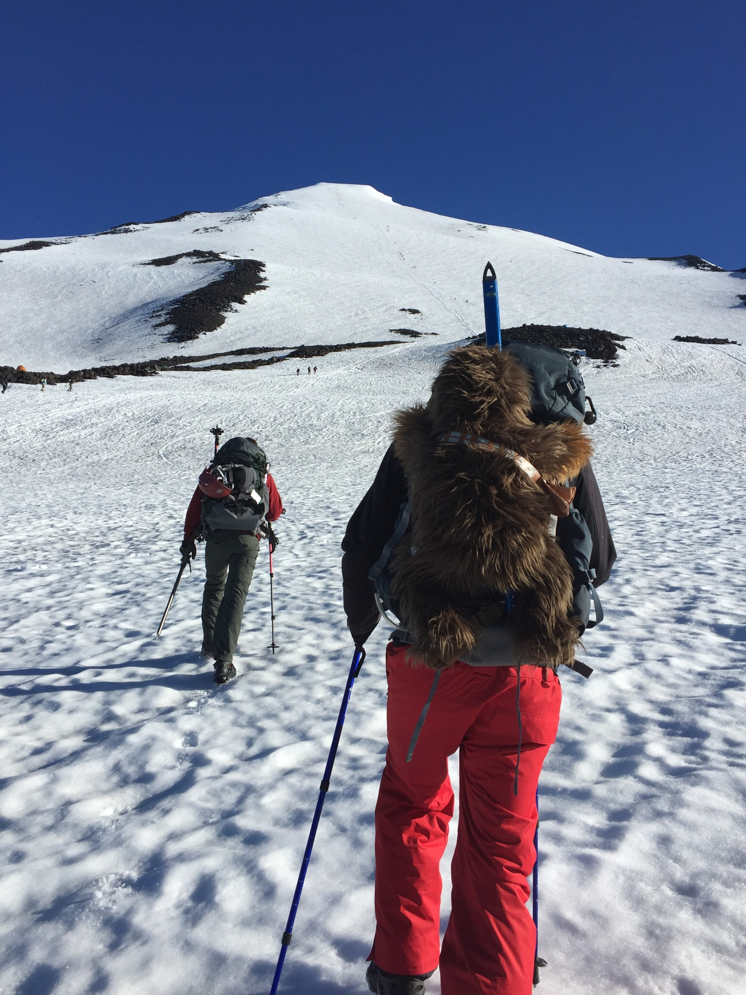 Wookie Summits Mt Adams