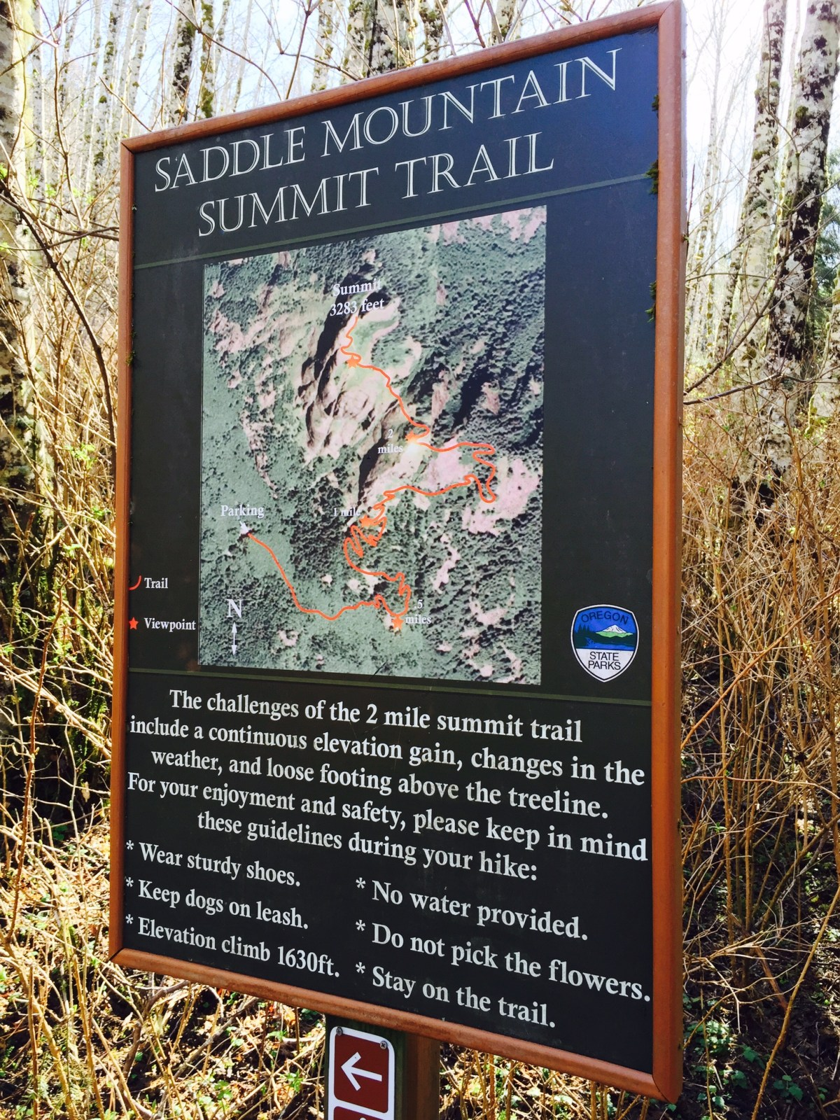 Trail Tip: Use your cell phone to take a picture of the map at the trailhead in case you get lost or forgot to bring a GPS.