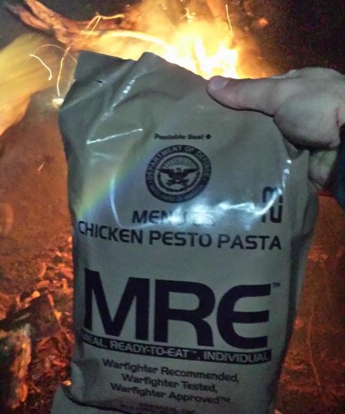 Chicken Pesto Pasta MRE