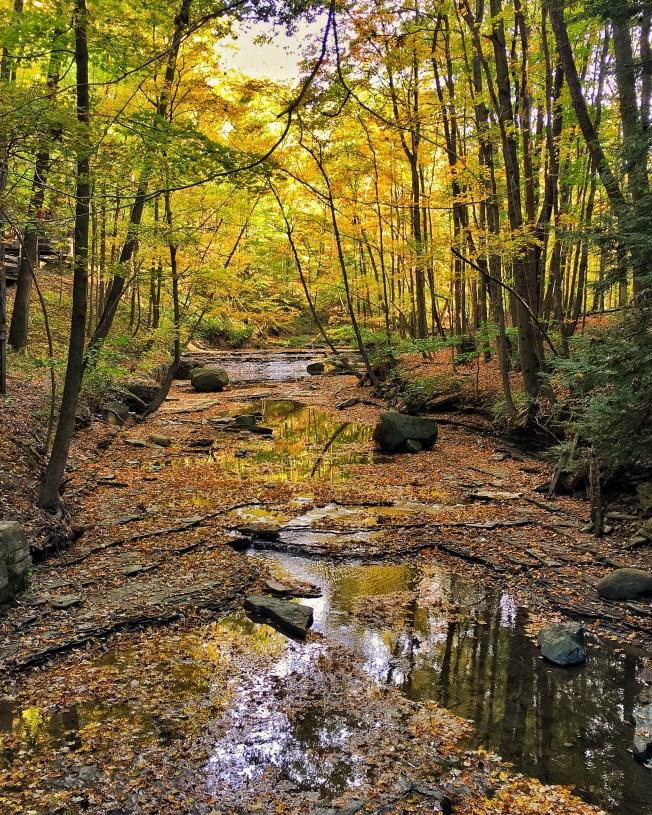 bedford reservation best hiking cleveland metroparks