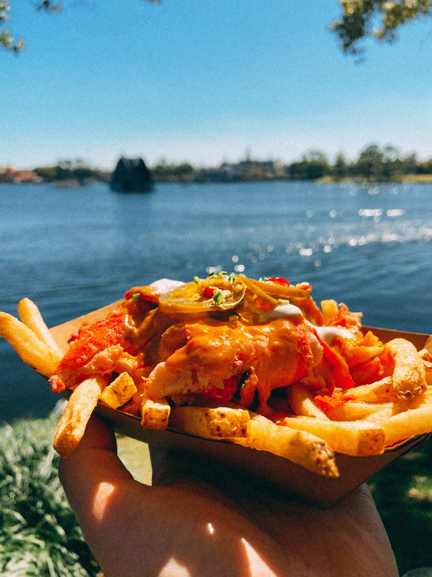 french fries poutine style with cheese and lobster on top with the background of the lake at Disney World Epcot in Orlando Florida