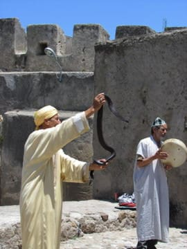 Travels in the Muslim World