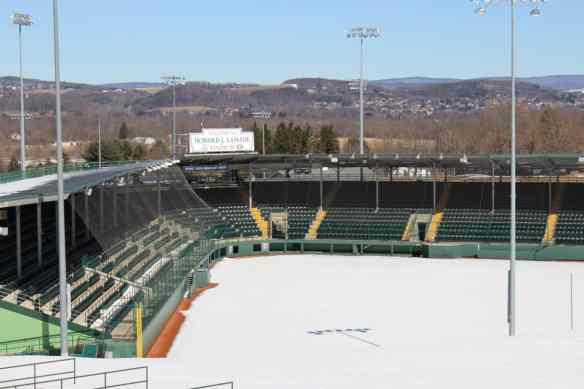 Little League World Series Stadium