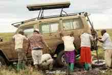 Serengeti-18