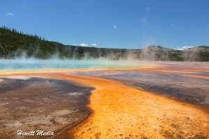 Yellowstone and Grand Teton Visitor Guide
