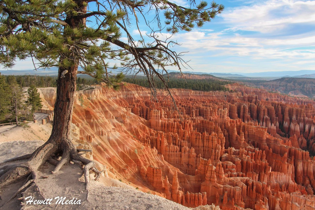 Bryce Canyon-3301