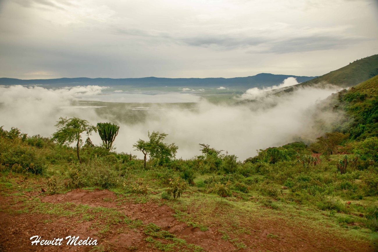 Ngorongoro-2067