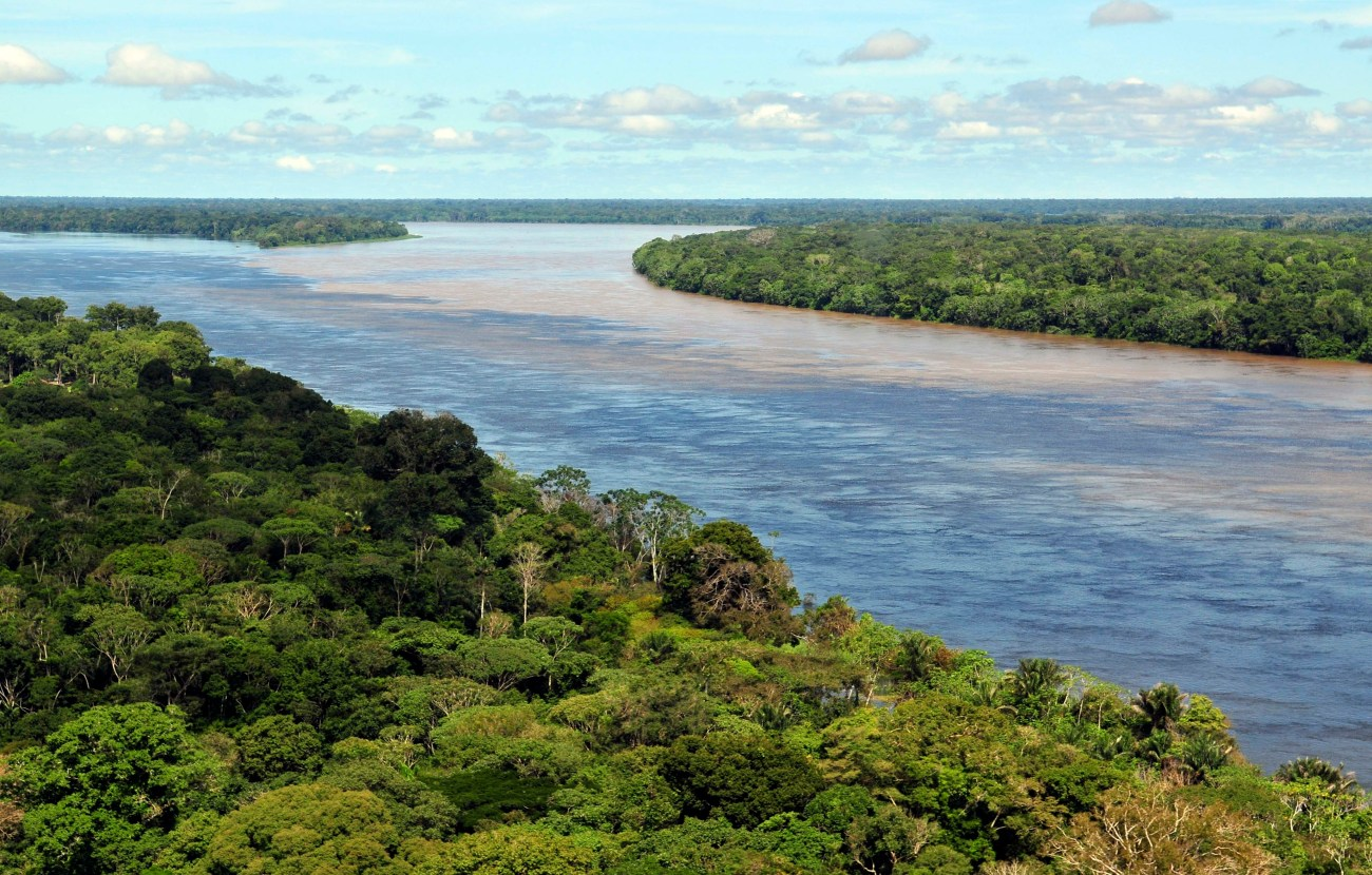 The Amazon Rain Forest.jpg