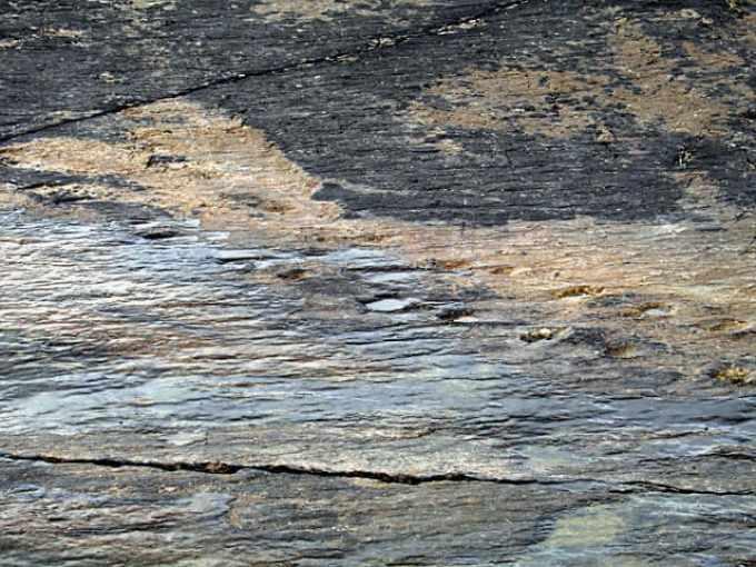 Tetrapod Tracks on Valentia.jpg