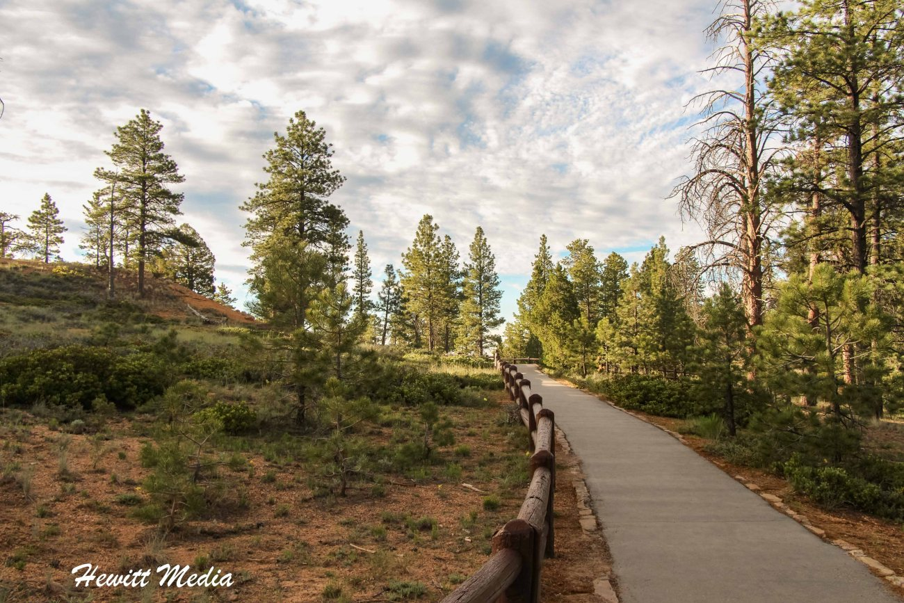 Bryce Canyon National Park-3220