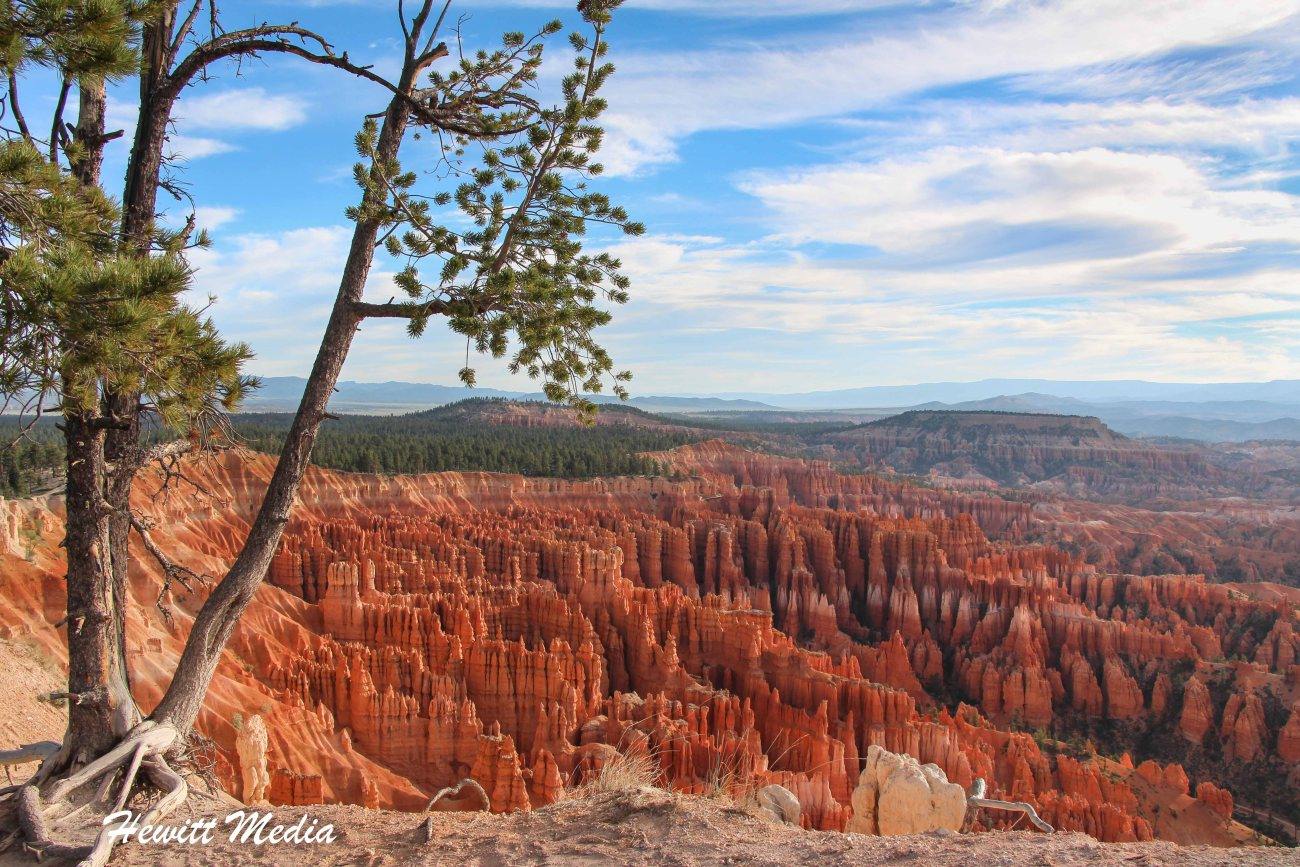 Bryce Canyon National Park-3330