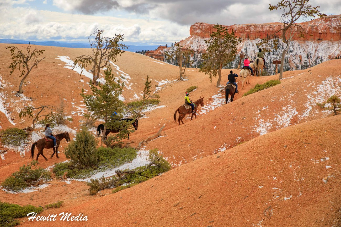 Bryce Canyon National Park-7051