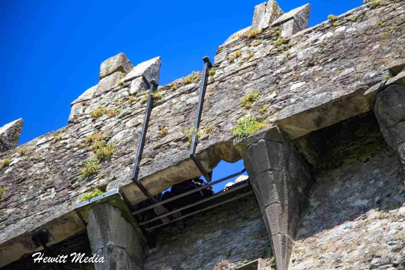 Blarney Castle-8674