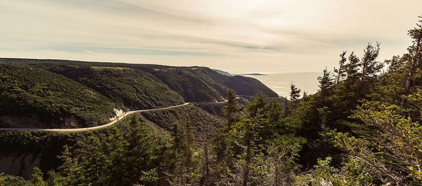 Cape Breton Trail.jpg