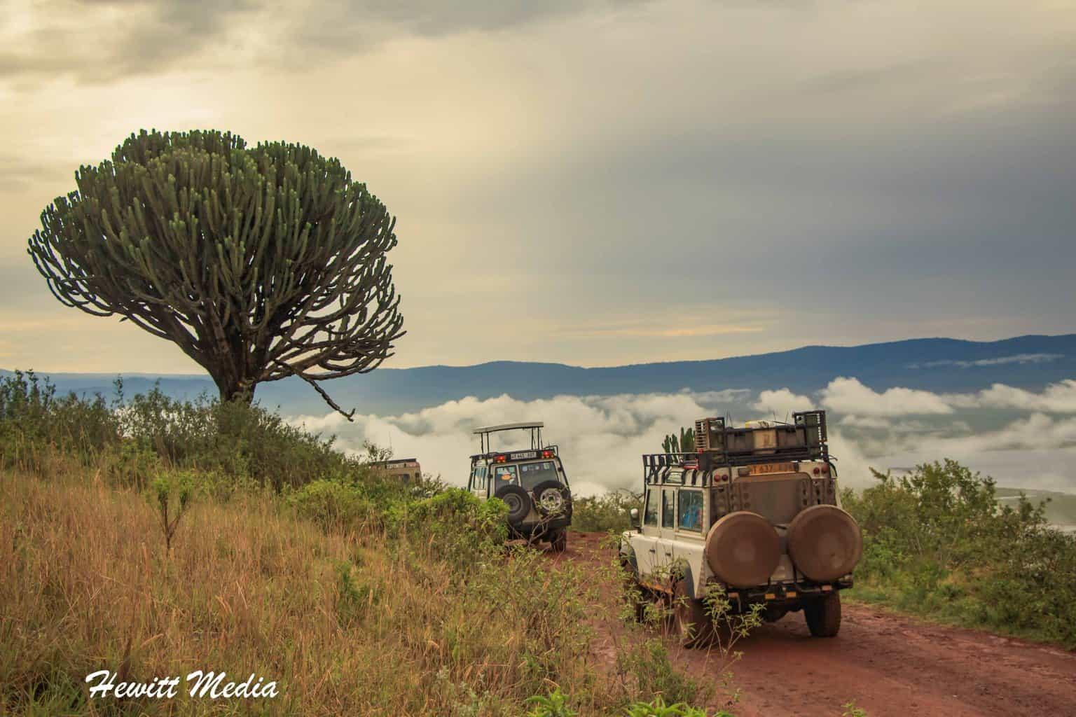 Tanzania Safari Travel Vlog