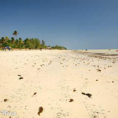 Paje Beach in Zanizbar