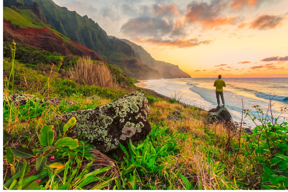 hawaii-839801_960_720.jpg