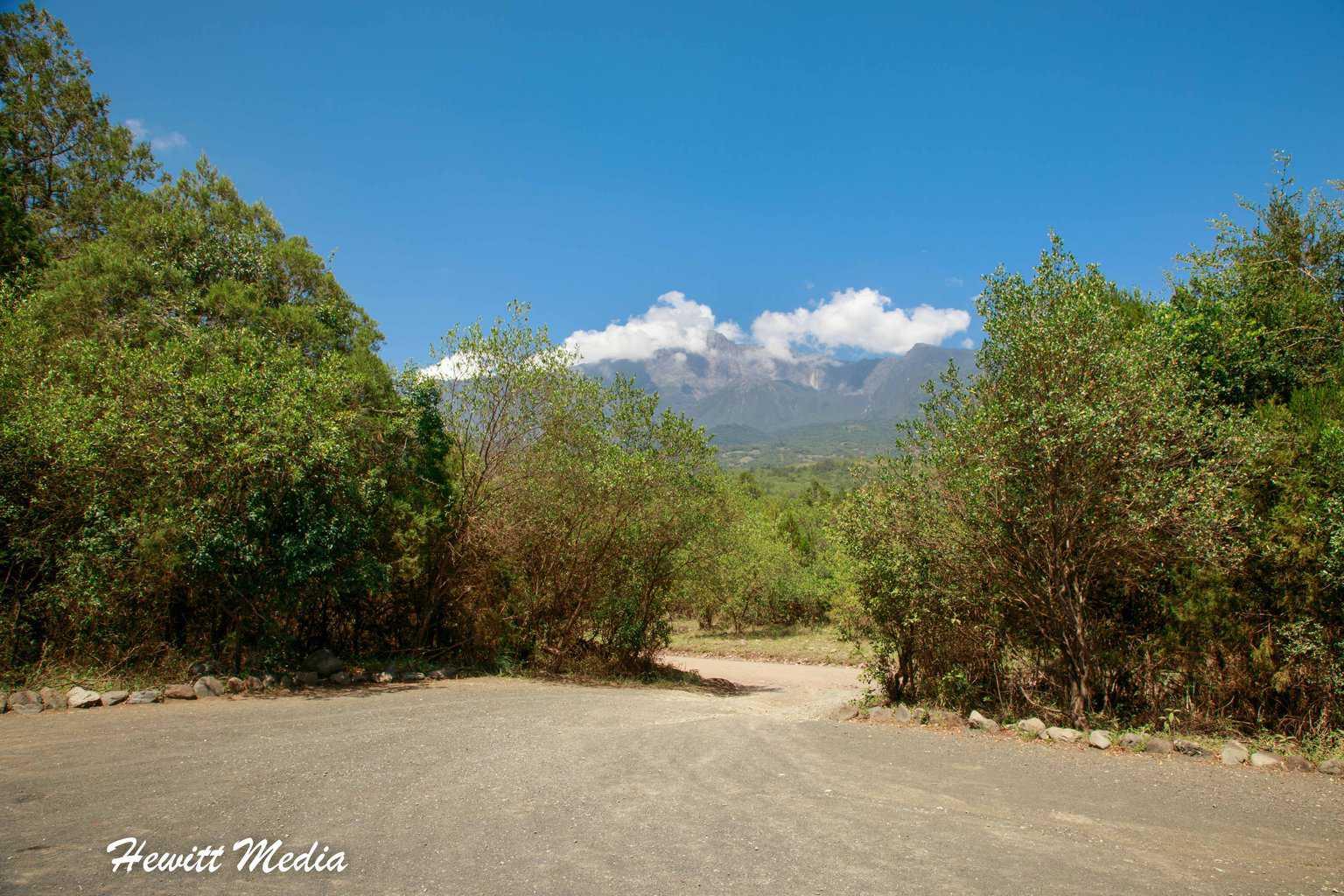 The road thru Arusha National Park
